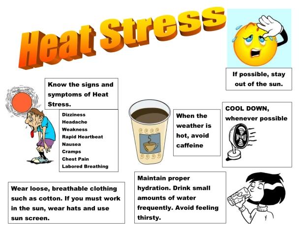 Heat stress poster